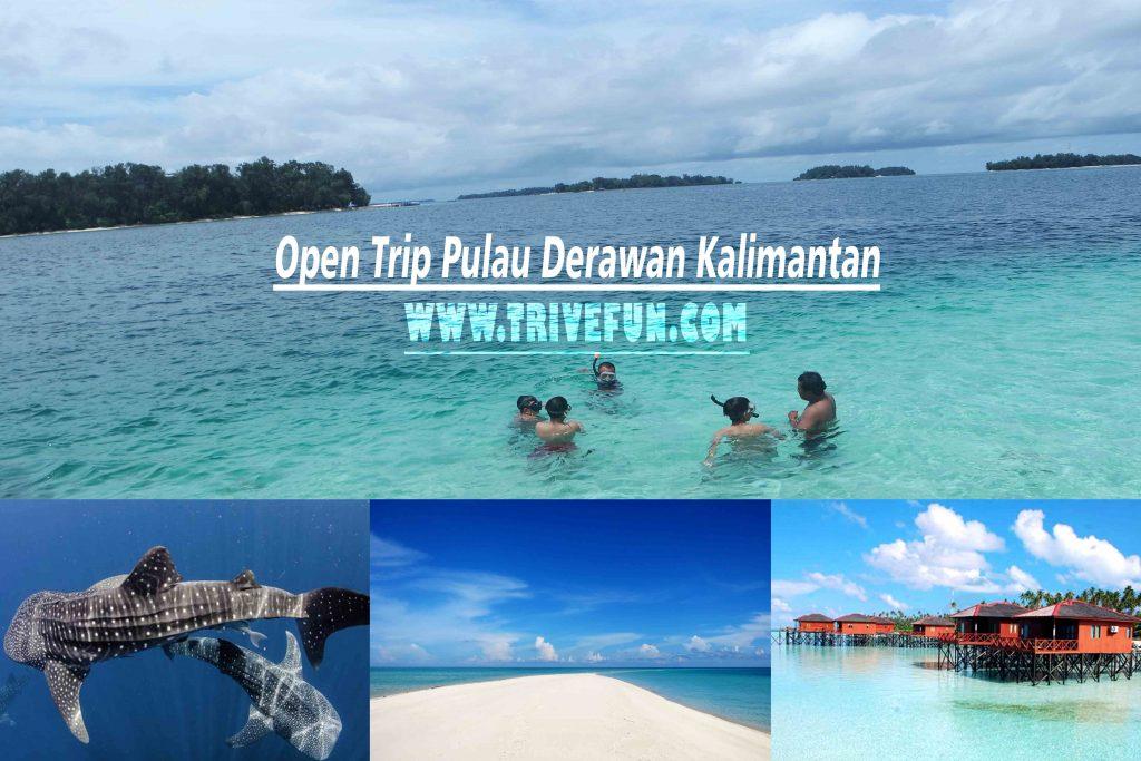 Open Trip Pulau Derawan Kalimantan